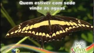 Vídeo 24 de Ministério Jovem