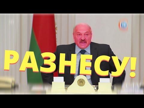 Лукашенко ВЗБЕСИЛСЯ и устроил РАЗНОС. НИН #19