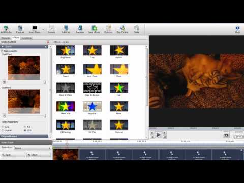 VideoPad Editor (OLDVERSION)Tutorial - How to Remove Black Borders
