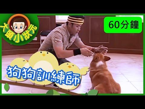 台灣-大頭小狀元-EP 010 中油 、 狗狗訓練師