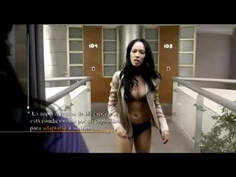 Los Inadaptados Trailer Oficial 2011