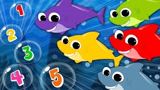 Five Hungry Sharks | Shark Song | Nursery Rhymes | Kids Songs | Baby Rhyme