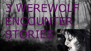 3 TRUE Scary Werewolf Encounter Stories