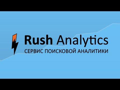Rush Analytics – Разовая проверка позиций