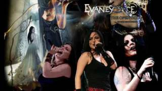 evanescence weight of the world