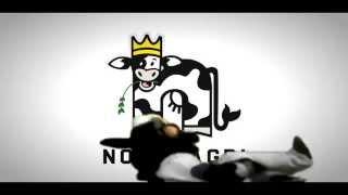Nobis Agri's Dancing Cow