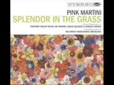 PINK MARTINI BUT NOW I'M BACK unofficial video