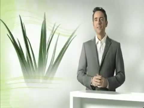 Aloe Vera Pflanze | Eigenschaften und Wirkung