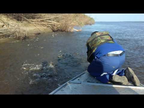 видео рыбалка в ханты-мансийске на ютуб