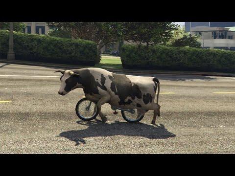 GTA 5 PC - Cow Riding a BMX