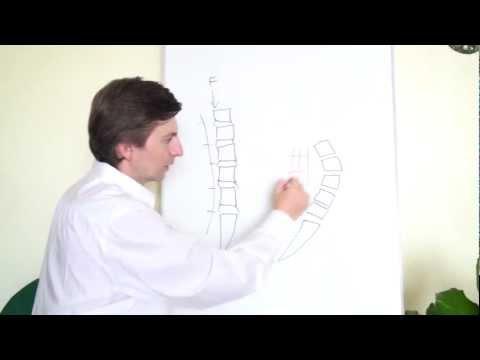 Quitar dolor de espalda en 2 minutos