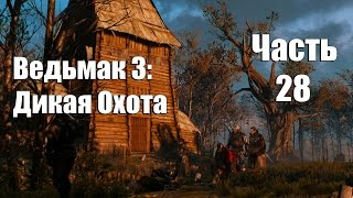 The Witcher 3: Wild Hunt - Трагедия на болоте № 28