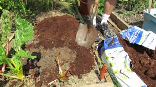 How to Use Peat Moss/Organic Matter in Your Raised Bed: My 1st Vegetable Garden - MFG 2013