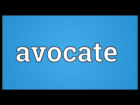 Header of Avocate