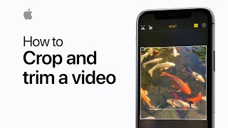 How to crop and trim a video on your iPhone — Apple Support
