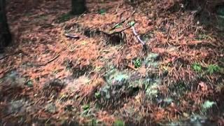 Le Le - Neen (Official Videoclip)