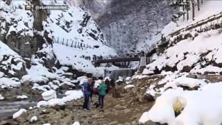 قرود الجبال رواد ينابيع المياه الساخنة باليابان