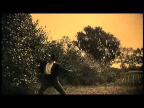 Animal Collective - April And The Phantom