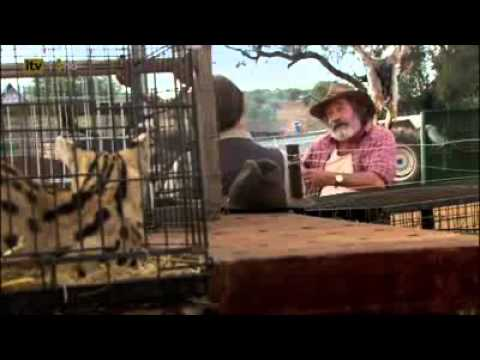 Wild At Heart Series 5 Episode 6 Part 1