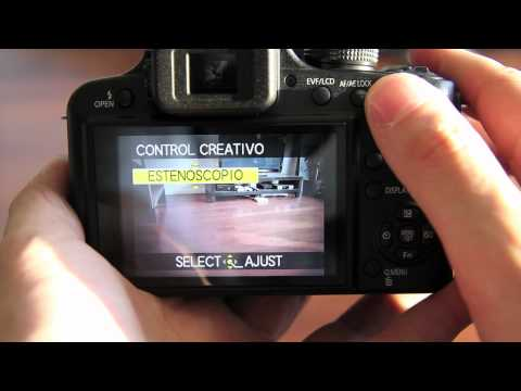 Camara Panasonic FZ48 - Digitalrev4U