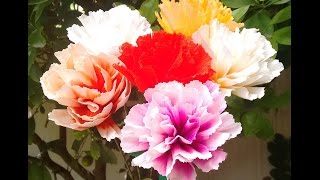 How to make Paper flower 2 Colour Carnations (Flower # 63)
