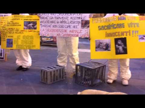 Fermiamo l'Italia per fermare Green Hill – Chieti