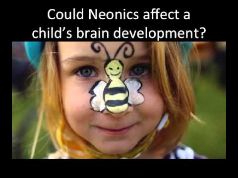 NEONICS: Are these commonly used insecticides killing the birds and the bees and harming us as well?