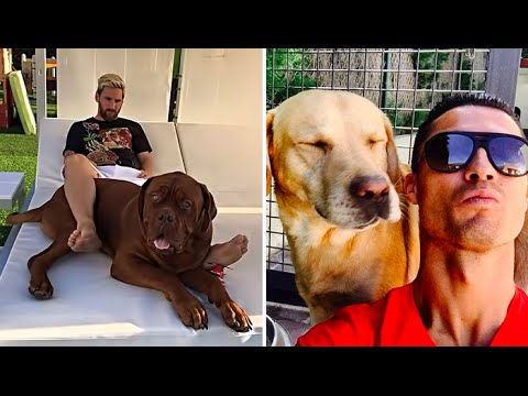 30 Famous Footballers And Their Dogs  ▶  Vote for The Best  ▶