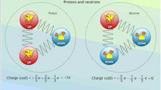 beta decay and quark changes animation