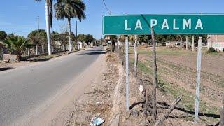 'Chupacabras' aterroriza a personas de La Palma Angostura
