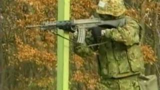 Firing Howa Type 89 5.56mm Assault Rifle - Japan JGSDF & Law Enforcement Firearm