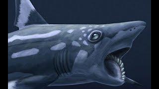 Download Lagu Paleo Profile - Bunch of Prehistoric Fish Gratis STAFABAND