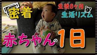 【赤ちゃんの1日に密着】どんな感じ?生後8ヶ月の生活リズムは? みはるんchannel