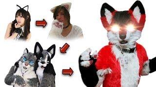 Explicación: Líneas evolutivas de los Furros