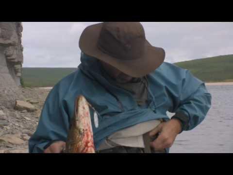 рыбалка на реке алакит