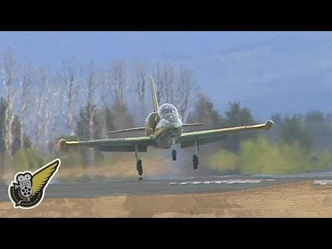 L-39 Jet Trainer Aircraft Hit By Whirlwind On Take-off