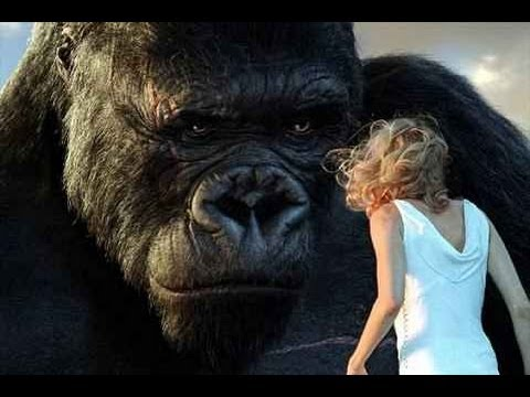 Will We See Another KING KONG? - AMC Movie News