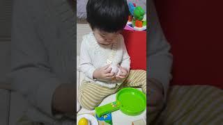 18개월 계란장난감 호비교구