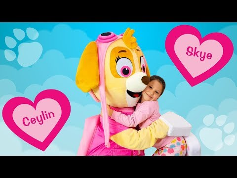 Ceylin & Skye - Head Shoulders Knees and Toes - Finger Family - Are You Sleeping Songs Learn Colors
