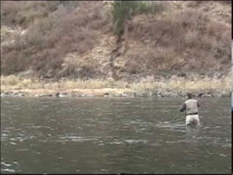 Steelhead Fly fishing the Grande Ronde river in Washington