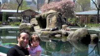 Kayla's day in Central Park (zoo, baseball & bubbles!)