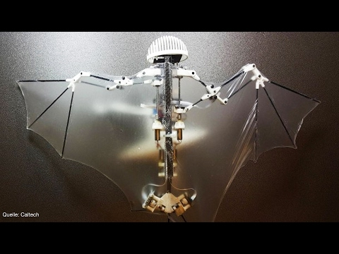 Batman-Roboter! - Clixoom Science & Fiction