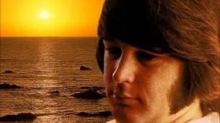 Watch Brian Wilson Let It Shine video