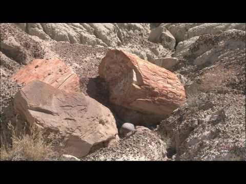 Petrified Forest National Park 3-minute Tour