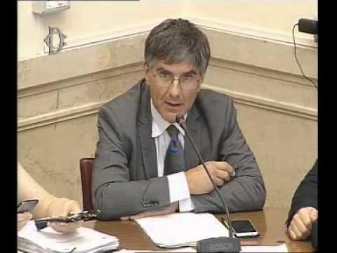 Roma - Audizione Sistema informatico nazionale sviluppo agricoltura (09.07.15)