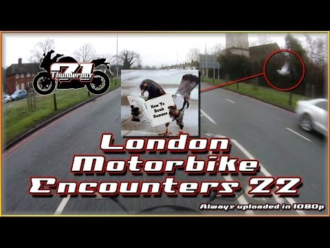 London Motorbike Encounters 22 – Dive Bomber