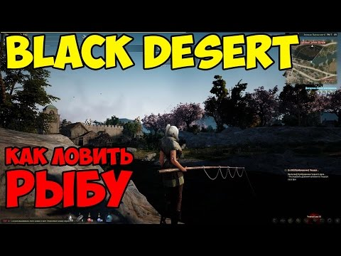 где ловить рохлевого ската в black desert
