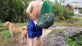 Mưa Dầm Thăm Lú Dính Lươn To và Cặp Rắn Khổng Lồ l Snake Trapping