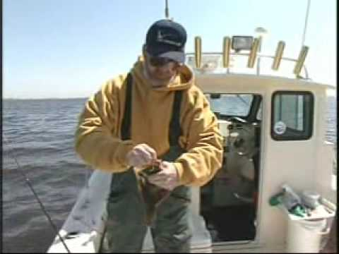 Raritan Bay NJ Flounder Fishing