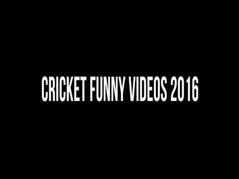 Cricket funny videos 2016